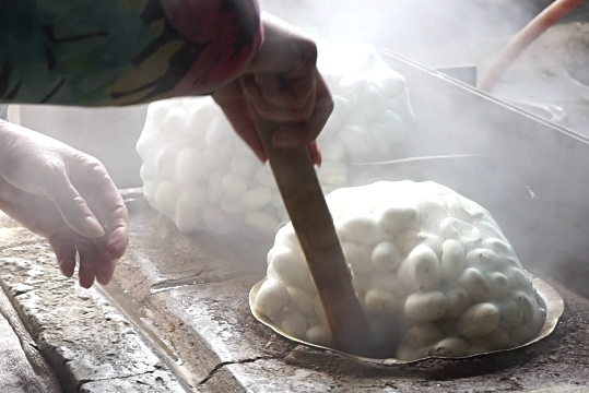 Cocoons being boiled